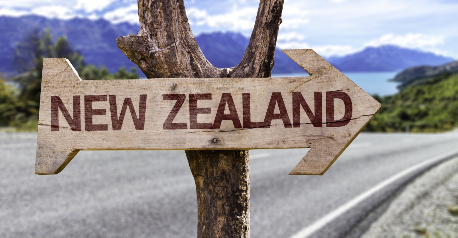 Trusted New zealand immigration visa Consultant In Dubai. Ascent ...